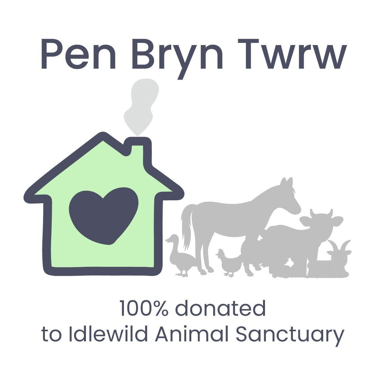 Pen Bryn Twrw